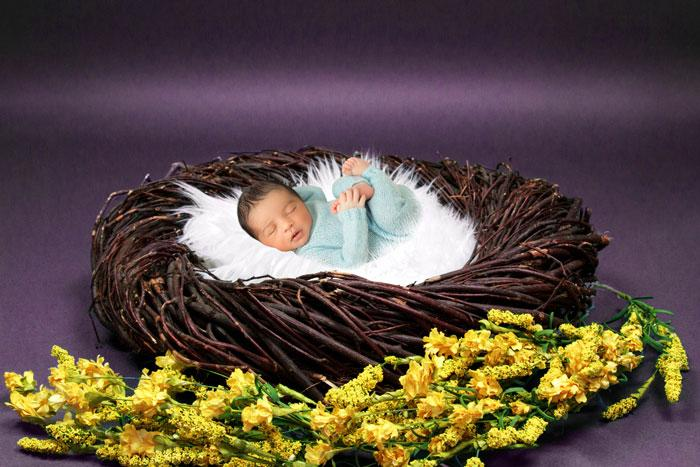 Brown basket with yellow flowers | Baby Photography backdrop - Littleaarchi