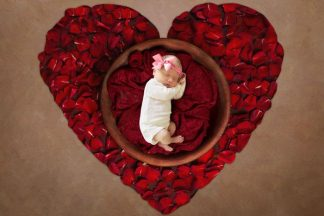 Rose Heart Basket | Full Baby Photography background - Littleaarchi