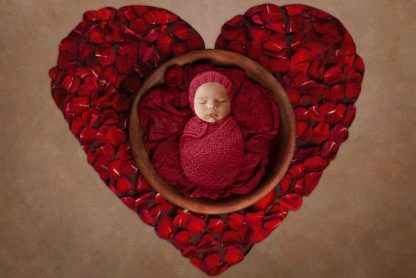 Rose Heart Basket | Newborn Baby Photography background - Littleaarchi