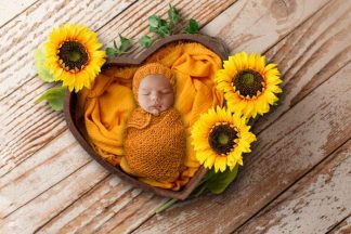 Sunflower heart basket | Newborn Baby Photography background - Littleaarchi